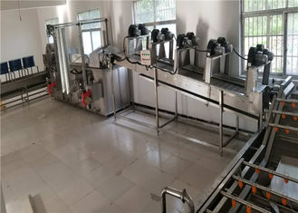 China 200 - 400kg / H Food Washing Equipment , Crayfish / Vegetable Processing Line supplier