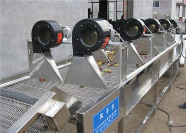 China Vacuum Industrial Fruit Dryer Machine , Compact Structure Tomato Drying Machine supplier